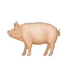 Pig Apple / WhatsApp Emoji by emoji