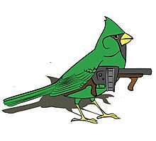 Budgie with a Gun Green Photographic Print