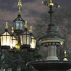 City Hall Park Fountain - NYC by Sarah McKoy