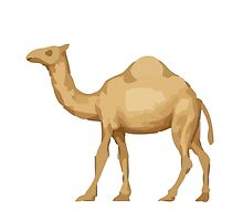 Dromedary Camel Apple / WhatsApp Emoji by emoji
