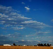 Outskirts of Dalby © Queensland Australia by Vicki Ferrari