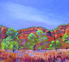 Cliffs via Victoria River Northern Territory by Virginia McGowan