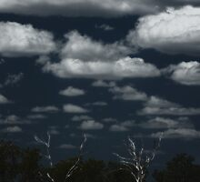 Dry Country Sky © by Vicki Ferrari