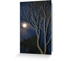 Quilpie Moon © Vicki Ferrari Greeting Card