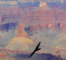 Soaring Over the Grand Canyon Sticker