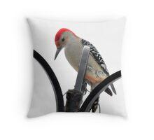 Redheaded Woodpecker Throw Pillow
