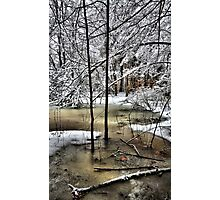Late February Snowfall - A Hint of Color Photographic Print