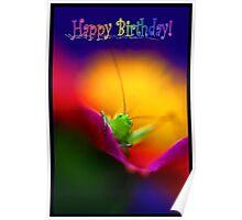 Happy Birthday Card Peek a Boo Photo Poster