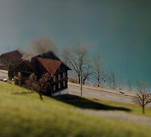 An Itsy Bitsy House on an Itsy Bitsy Lake by mochamocha