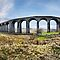Ribblehead Viaduct panorama by eddiej