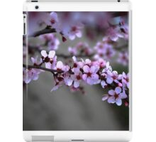 Cherry Blossoms of Spring iPad Case/Skin