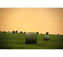 Danish Fields Photographic Print