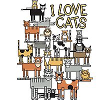 I Love Cats Photographic Print