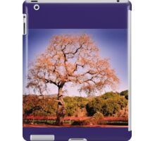 Beautiful view at Fess Parker iPad Case/Skin