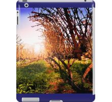 Vines at Fess Parker Winery iPad Case/Skin