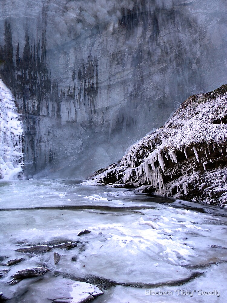 Ice World by Tibby Steedly