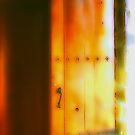The Door by Nancy Stafford