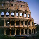 The Colosseum in Rome Italy by Luigi Petro