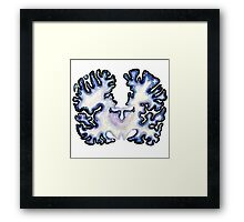 Galaxy Nissl Stain Brain Framed Print
