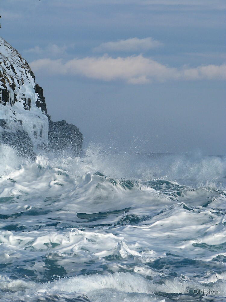 Middle Cove, Untamed by OldBirch