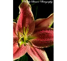 CloseUp Lily Photographic Print