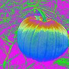Rainbow Pumpkin by Tiffany Vest