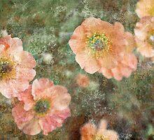 remembering by Liz Ruest