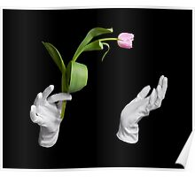 Pink fresh tulip in magic hands Poster