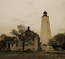 Sandy Hook  by Jeff Palm Photography