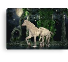 Quieting The Spirit Canvas Print