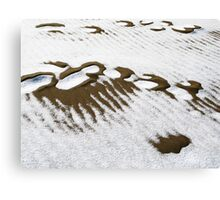 Sand and snow Canvas Print