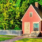 Little Pink Houses - Colonial Williamsburg by Mark Tisdale