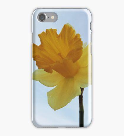 Early Daffodil iPhone Case/Skin
