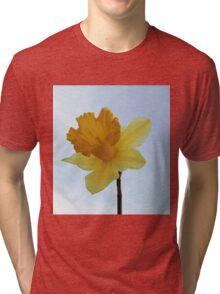 Early Daffodil Tri-blend T-Shirt
