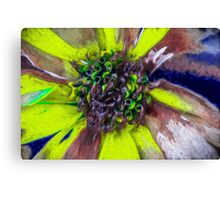 Dying Sunflower Canvas Print