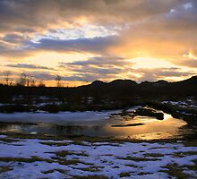Sunset On The Pitt River by Tanya Kenworthy-Mosher