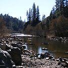 Bear River by NancyC