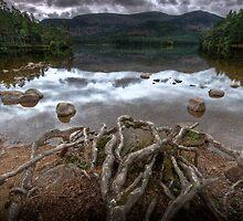 Loch An Eilean by Gordon Brebner