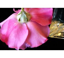 Rose and Glass Photographic Print
