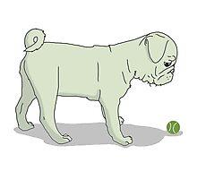 Light Pug and Ball Photographic Print