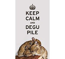 Keep Calm and Degu Pile Photographic Print