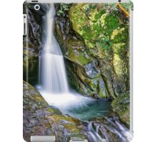 Mt.Cougal Cascade.... iPad Case/Skin