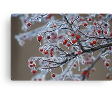 Icy Winter Canvas Print