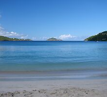 Megan's Bay, St. Thomas by Timothy Gass