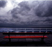 The Red Bench by Wayne King