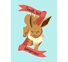 Small, but dangerous. Photographic Print