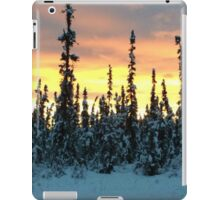 Alaskan Sunset iPad Case/Skin