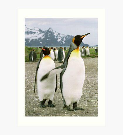 Pointing Penguin Art Print