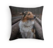 Look at me! I'm so pretty! Throw Pillow