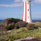 Mersy Bluff Lighthouse. by Alexh